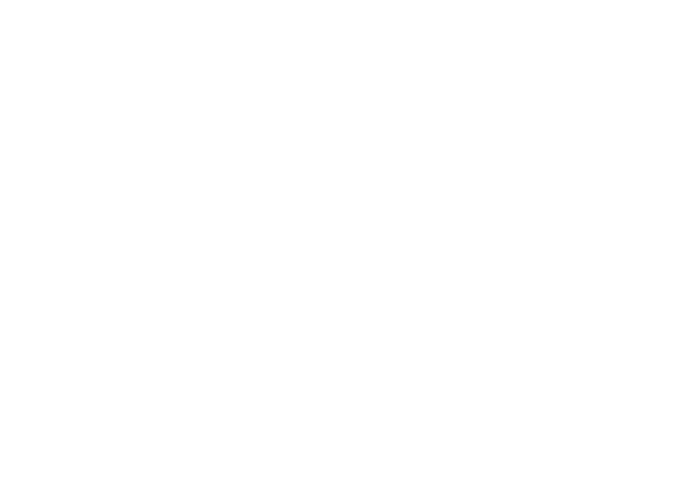 Valani Global